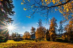 Golden October (2)