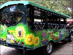 Tortola : un coreografico taxi per fare un t0ur dell'isola