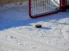 Puck and Net
