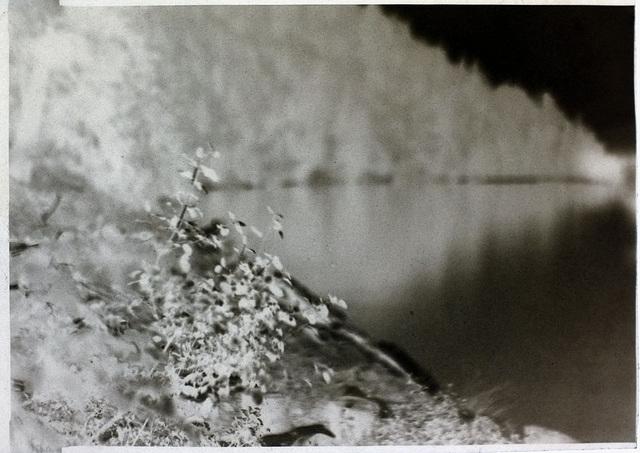 Lake calotype
