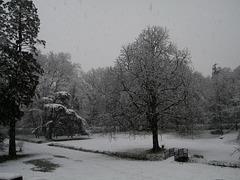 Le parc sous la neige ce matin...
