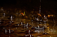 .........die Wasserblasen in einen alten Brunnentrog......