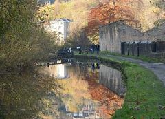An autumn walk on the canal
