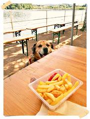 DANA: alleeeeez, donne-moi une frite, quoi !