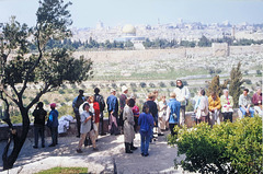 Die Altstadt von Jerusalem (PiP)