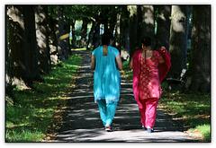 Indian Summer (◕‿-)