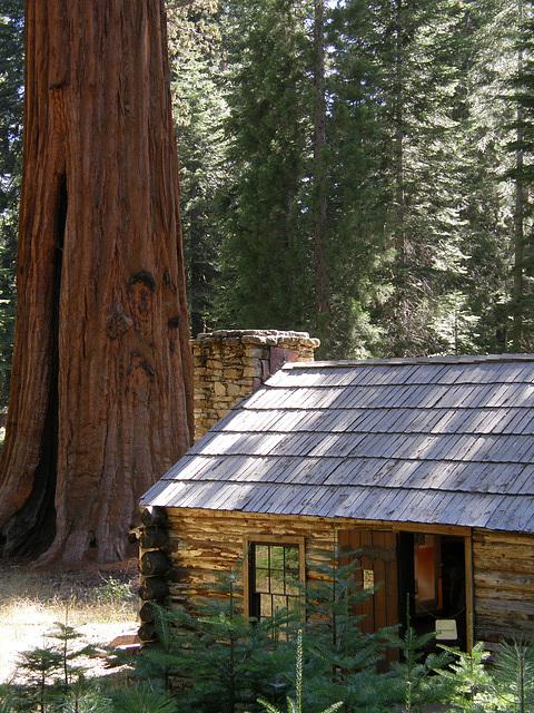 Galen Clark Museum, Yosemite