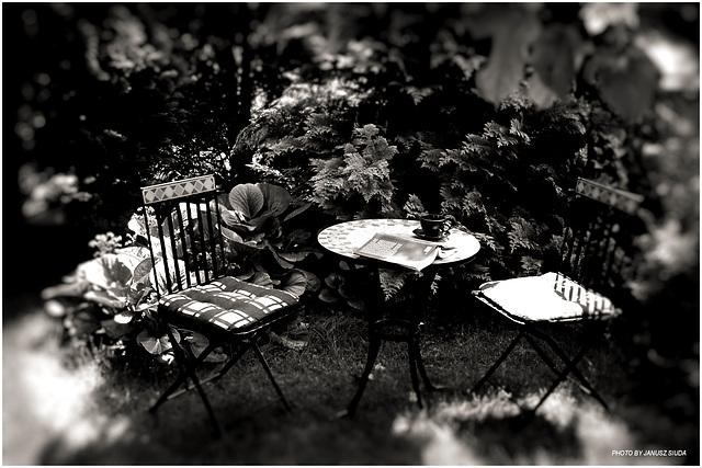 ...in the Garden...