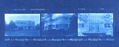 35mm Cyanotype contact print