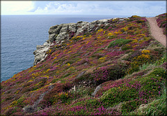 St Agnes' Head, Cornwall