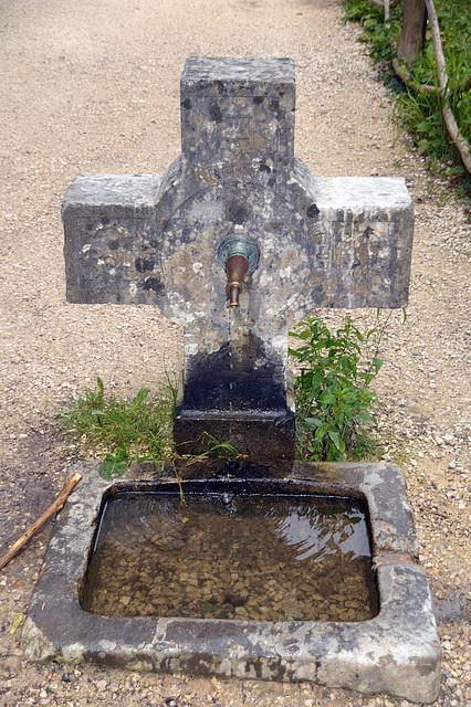 Lebenselexier Wasser