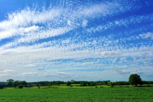 Nice cloud formation