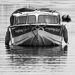 'Laughing Cat IV', River Leven, Dumbarton