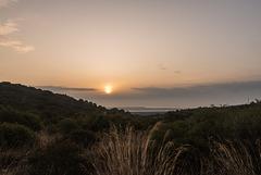 Le jour se lève dans la brume maritime, la lune se couche sur les Corbières !  ( 2 notes )