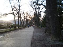 Via delle Mura Urbane.