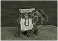 The 50 Image Project- tea bag- 7 -on the road