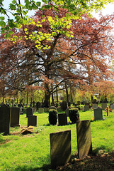 Bottersford churchyard ~ Leicestershire