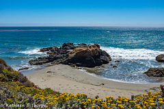 Pismo Beach California Seascape 001