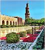 Oman : la grande moskea della capitale Mascate - the Sultan Qaboos mosque