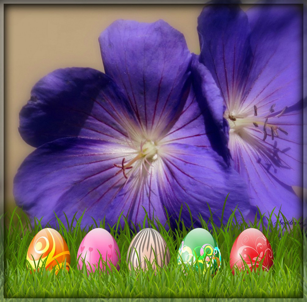 Happy Easter.............Bon dimanche Pascal !