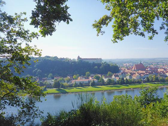 Blick auf Schloss und Altadt von Pirna