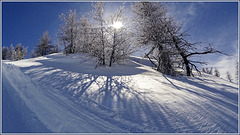 Nevicata di Marzo - (592)