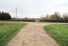 Chemin de l'étang d'Auneux - 6262