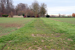 Chemin de l'étang d'Auneux - 6269