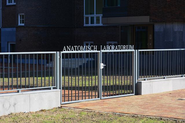 Anatomisch Laboratorium
