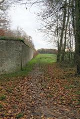 Chemin sportif - 6278