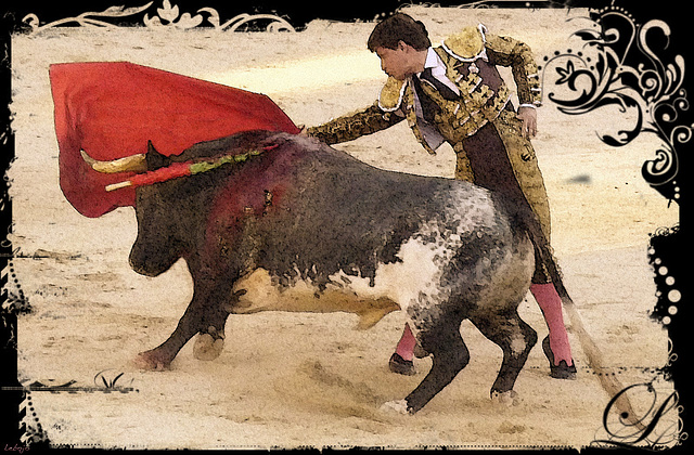 Bullfighting postcard