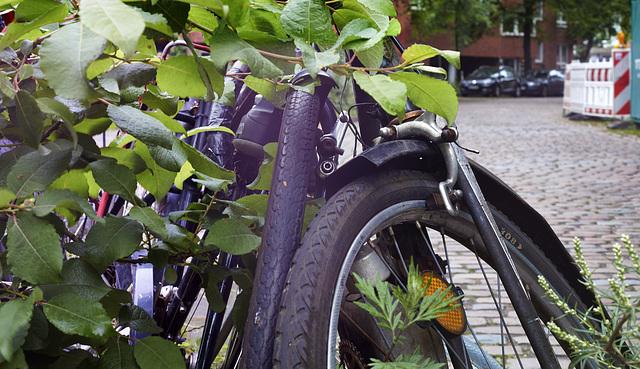 fahrrad-1127-1129 Panorama-01-07-17