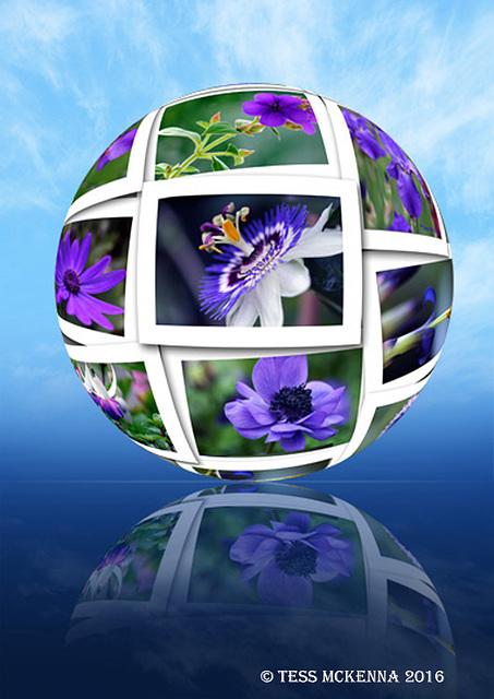 SPHERE-Purple flowers
