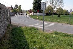 Sentier de Forest - 6533