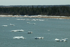 View from the Confederation Bridge - The ice finally breaks (Explored)
