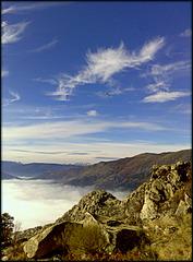 Sierra de La Cabrera, vulture and foggy valley