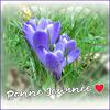 Bonne journée à tous  en ce 1 mars !