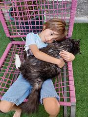 lucien et son chat