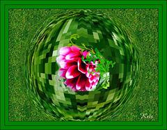 Un monde vert