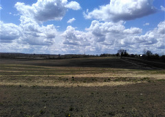 Paysage ontarien / Ontarian country side