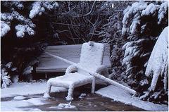 4-rocco-Maisons Laffitte sous la neigeneige-