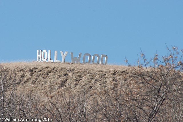 Hollywood on the Valley