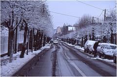 3-rocco-Maisons Laffitte sous la neige- (2)