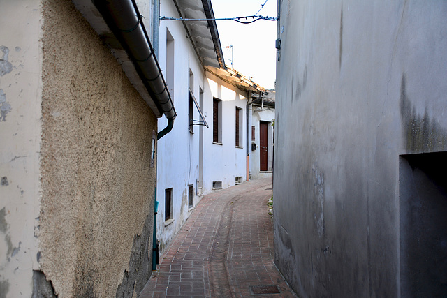 Cartoceto 2017 – Back street