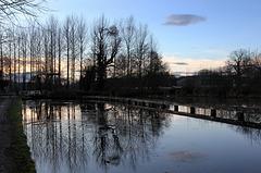 Winter reflections.  Birthday walk