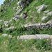 Salona : aqueduc