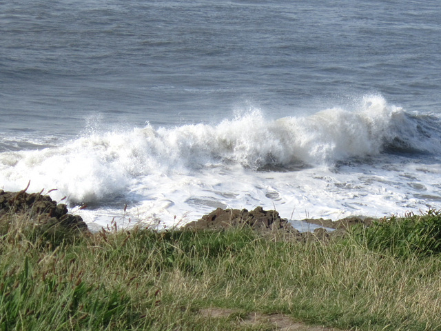 Some of the waves were tidy and crashed elegantly