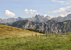 Bergwelt am Fellhorn