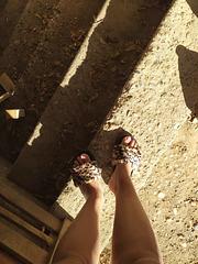 Nono et ses nouvelles pantoufles / Nono with her new new slippers (2)