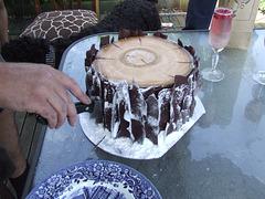 Ad's birthday lumberjack cake